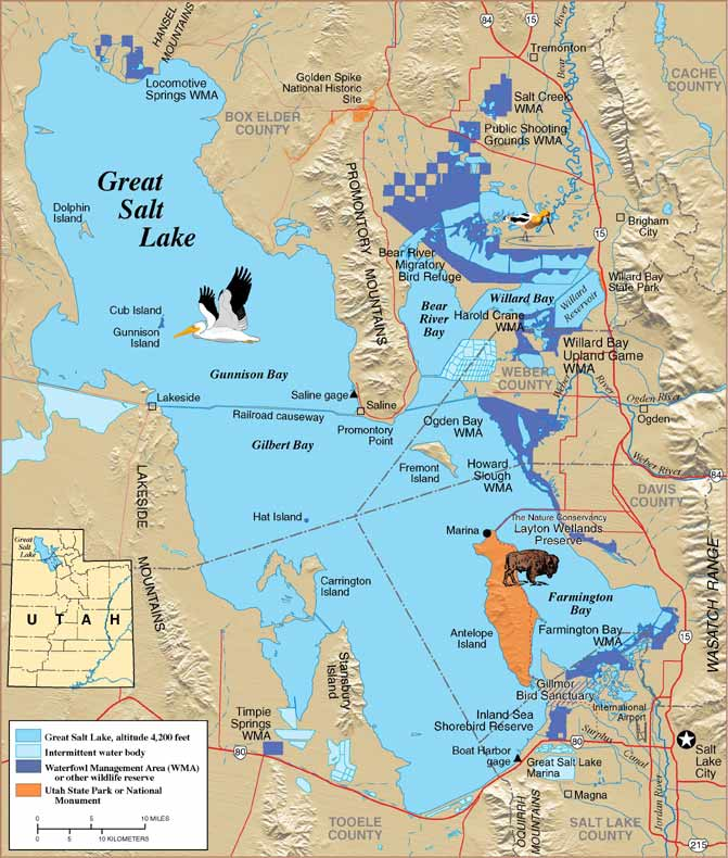 Gsl faq great salt lake yacht club for Salt lake city fishing